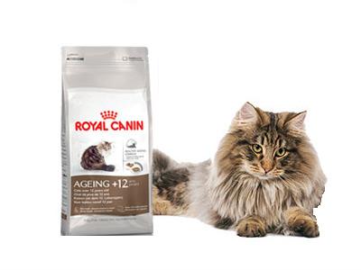 Royal Canin Cat Food Free Samples