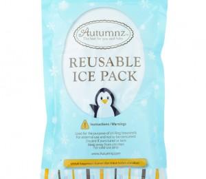 ice pack single pc